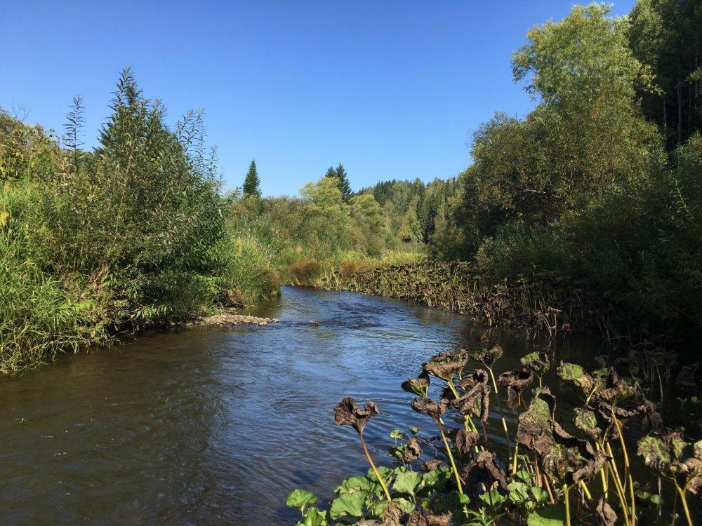 Река Кельбес