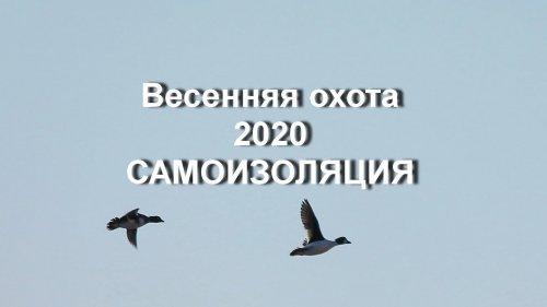 Весенняяохота 2020. Самоизоляция