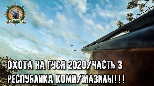 Охота на гуся 2020 в Республике Коми/Часть 3/Мазилы!