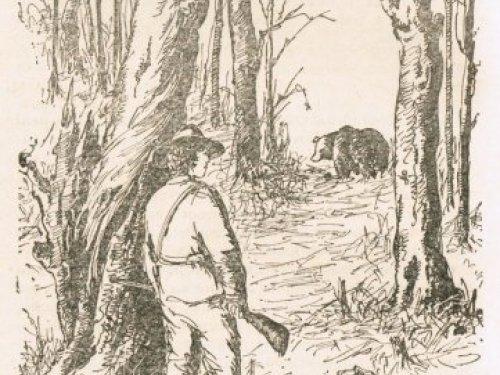 Уильям Фолкнер. Медведь