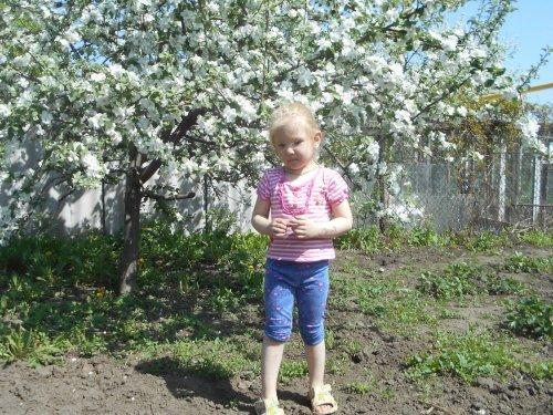 Когда яблони цветут!