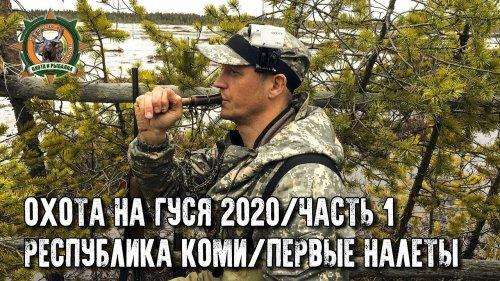 Охота на гуся 2020 в Республике Коми/Часть 1/Не успели расставиться, а гусь уже летит!