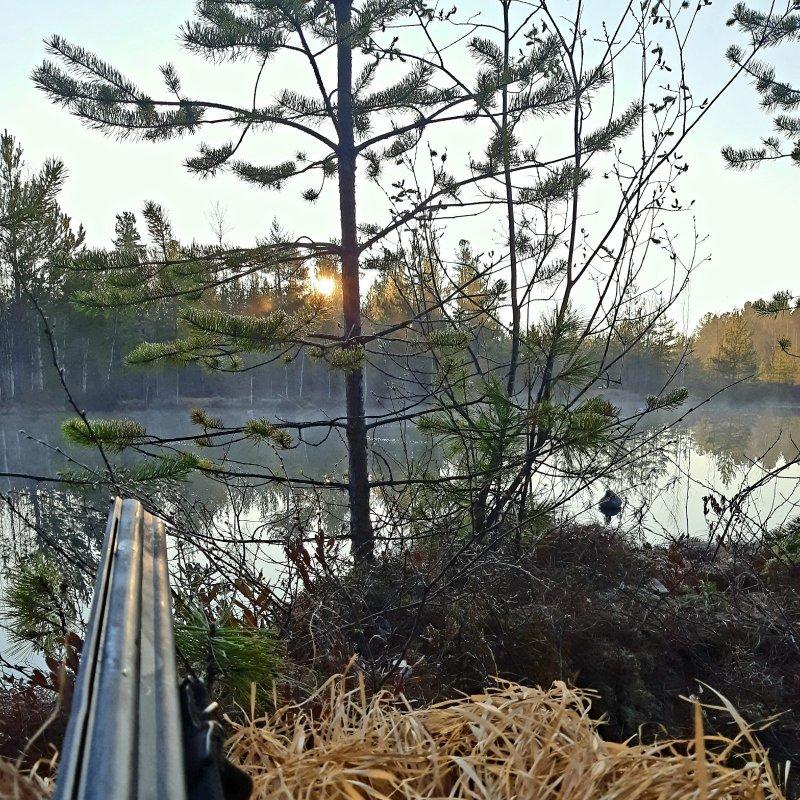 Вечер на таёжном озере
