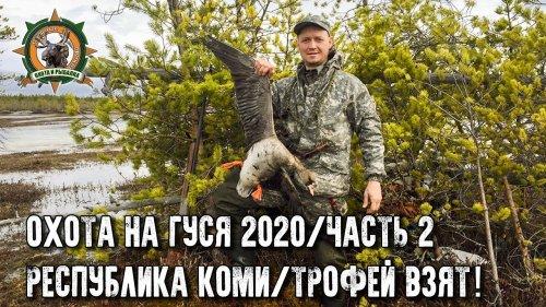 Охота на гуся 2020 в Республике Коми/Часть 2/Первые трофеи