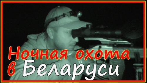 Ночная охота в Беларуси - косуля + кабан.
