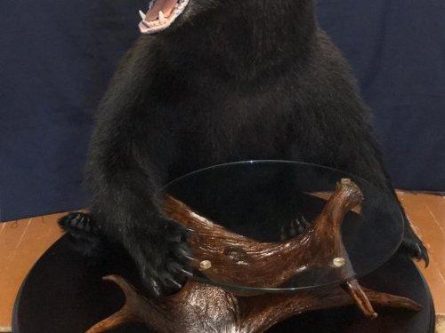 Медведь со столиком