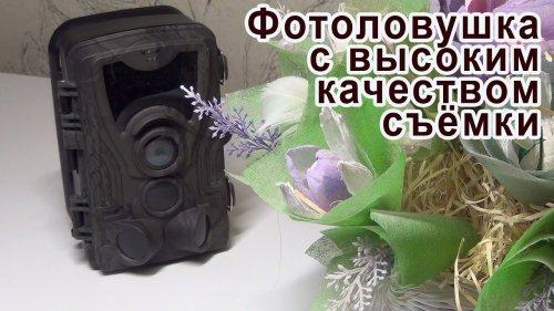 Фотоловушка с высоким качеством съёмки