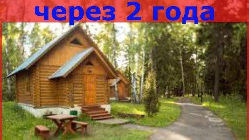 Дом в лесу из опила, спустя 2 года