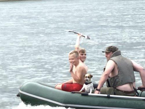 Трое в лодке и собака )