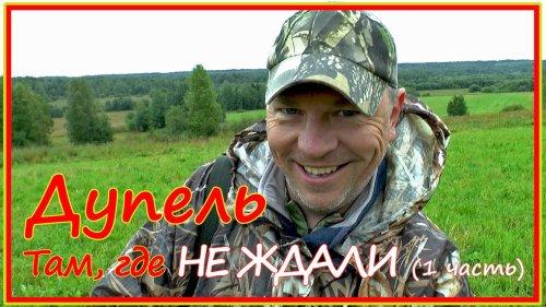 Охота на дупеля на севере Кировской области. Часть 1