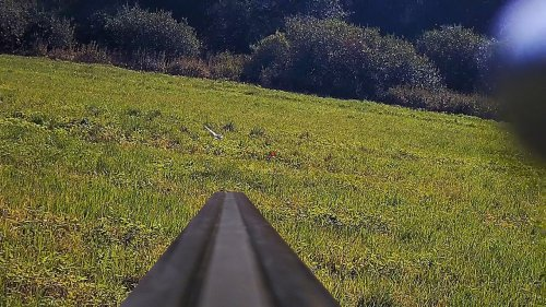 Выстрел, когда не поверил собаке и поленился ружье с плеча снять.
