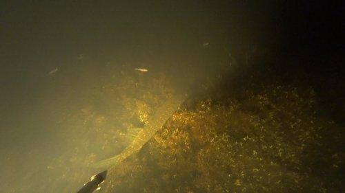 Подводная охота ночью. Новый свет. Добыча линя и щуки.
