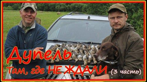 Горный дупель :) - охота на высыпках в Кировской. Часть 3.