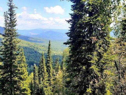 В горах Алтая.