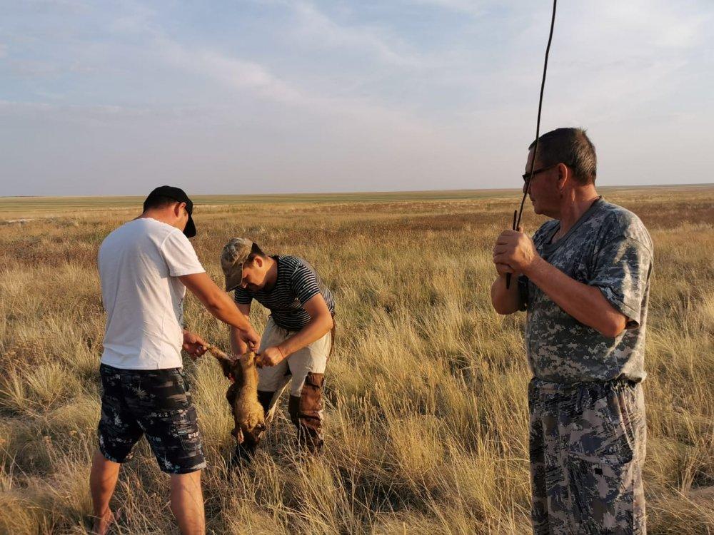 Ситуация под контролем)))))))))