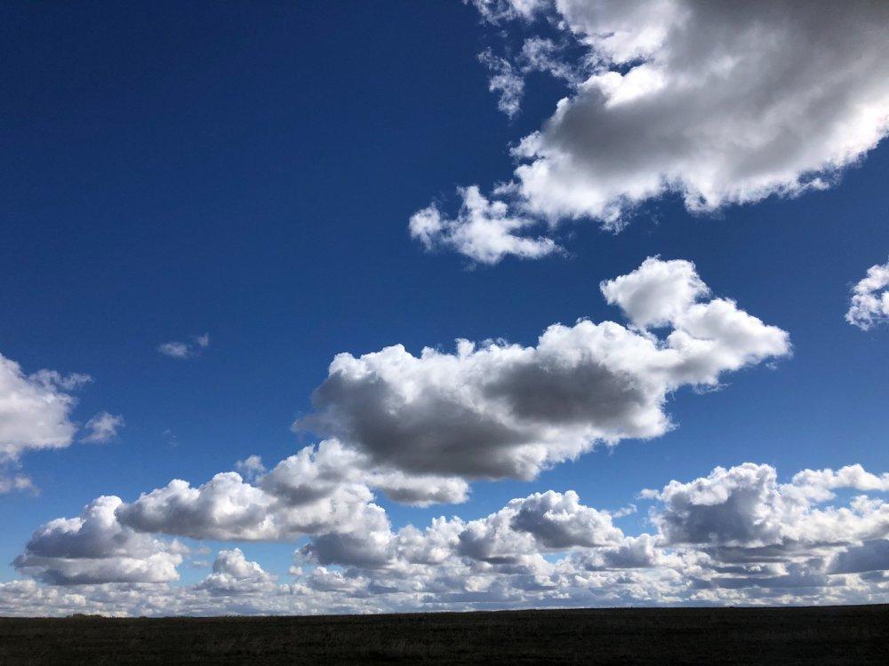 Красивейшее небо Алтайского края