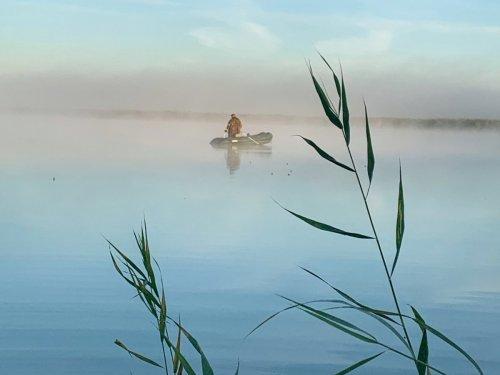 Утро, открытие, туман...