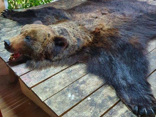 Ковер Сибирского медведя