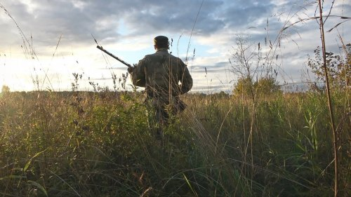 Охота на утку с подхода. Охота в Республике Коми.