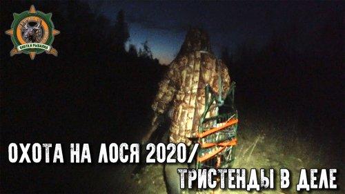 Охота на лося 2020/Идеальная погода для гона/Проверка самодельных тристендов