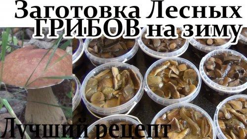 Лучший рецепт Заготовки Лесных Грибов на зиму