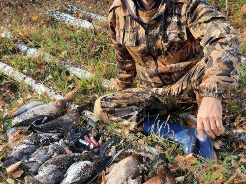 Охота была интересная по краю речки и рябчиков добыли и утку нашли