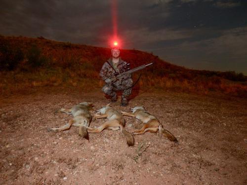А во лбу фонарь горит  с 1 января 2021 его зажигают новые правила охоты.