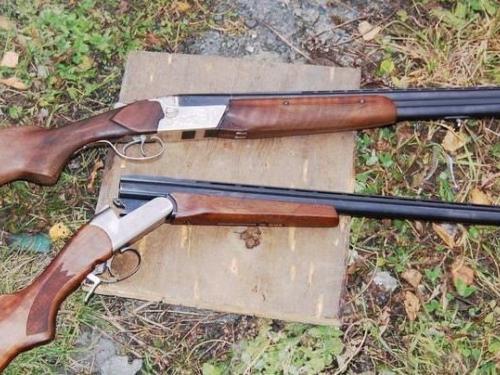 На Алтае задержаны подростки-браконьеры, застрелившие косулю