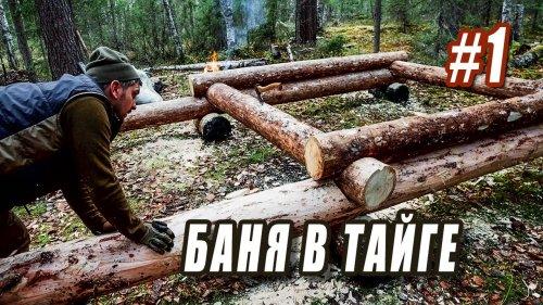 ЛЕСНАЯ БАНЯ. НАЧАЛО СТРОЙКИ. Серия 1.
