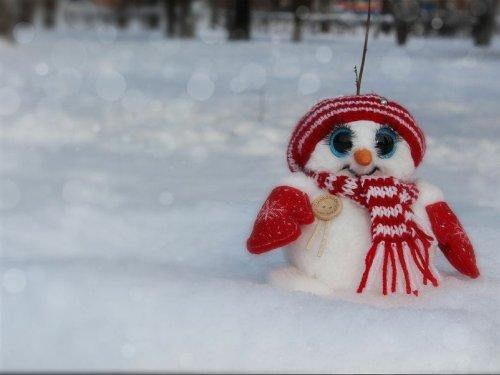 Где живут снеговики или история одного чуда