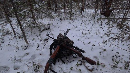 Охота с ружьями Иж-27 ЕМ и Тоз-78-04М 22LR на рябчика.