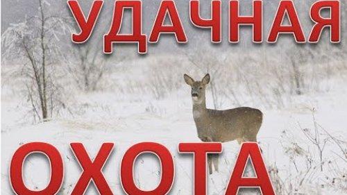 Удачная охота на косулю. закрыли 2 лицензии. Successful roe deer hunt. closed 2 licenses. 4K