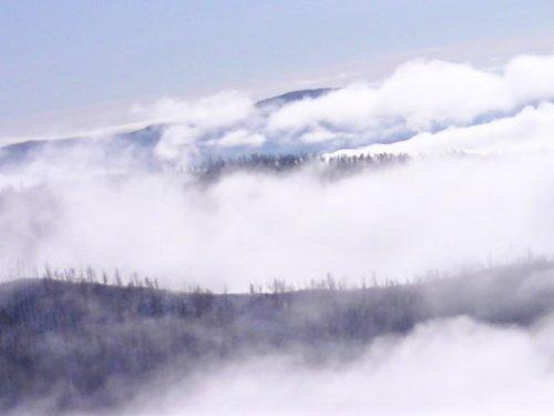 все лога в тумане
