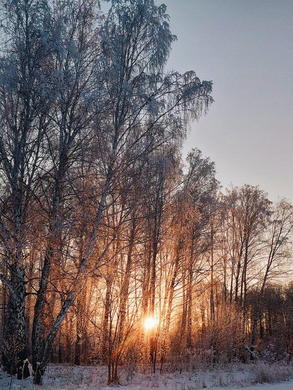 Морозный закат