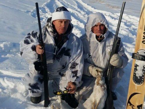 Зима,Омск,зайцы.