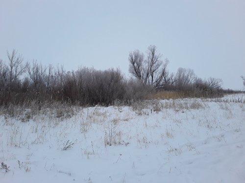 А вот и долгожданный снег