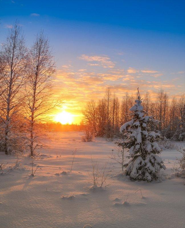 зимний вечер тих и светел