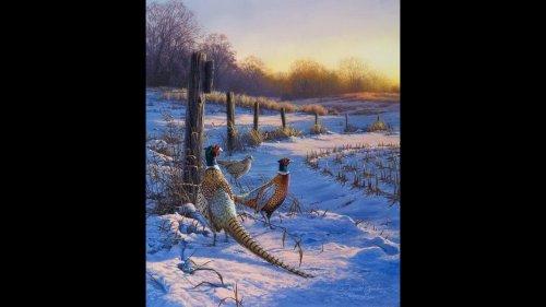 31 декабря .Кто в баню,а мы на охоту.Охота на фазана в горах.
