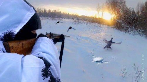 Зимняя охота на тетерева на лунках.