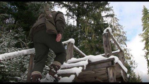 Охота на лося загоном! / Elk hunting in the paddock!