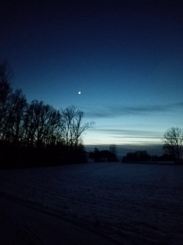 По снегу  и вечерняя природа выглядит по другому.