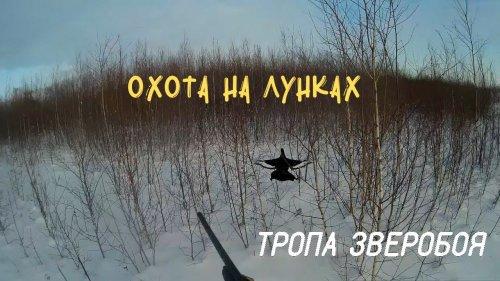 Тетерев вылетел прямо из под лыжи! Охота на косача с лунок
