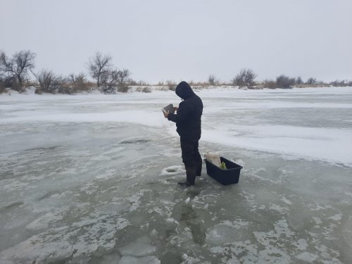 На наших зимних речках-2