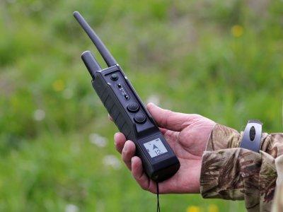 Охота и обучение собак с прибором Pro 550 Plus