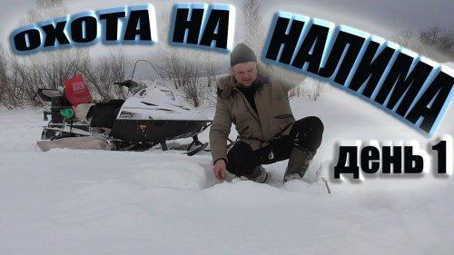 Снегоход тайга варяг 550 река Чулым рыбалка ерш жерлицы глухозимье