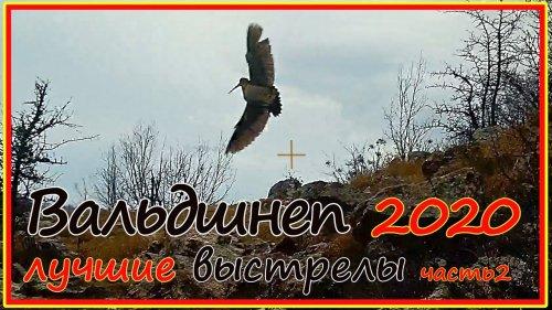 Охота на вальдшнепа в горном Крыму. Лучшие выстрелы сезона 2021, записанные shotkam