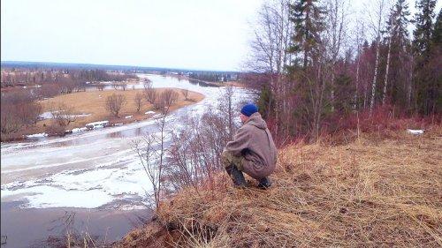 Ищу весеннего рябчика / Прогулка по лесу с манком. Природа севера.