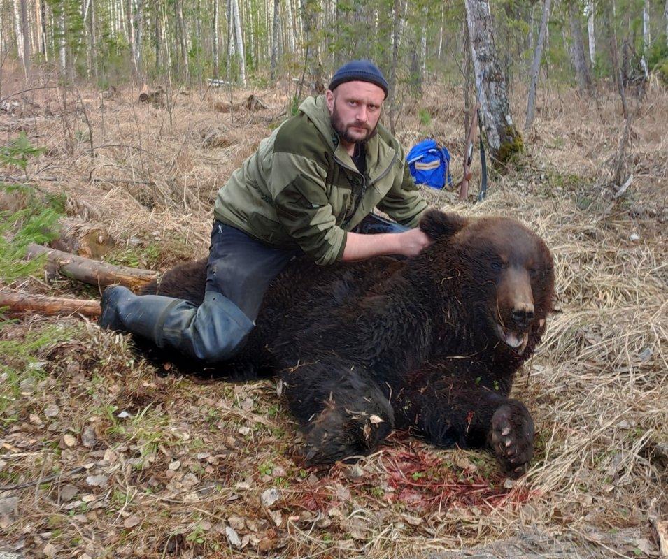 """""""Весенний медведь"""""""