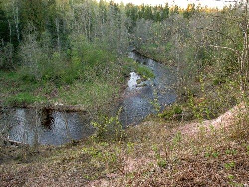 На лесной речке.