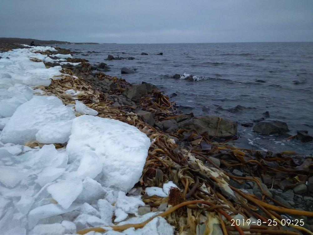 Берег Северного Ледовитого океана.